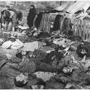 Rzeź Wołyńska to nie ludobójstwo?