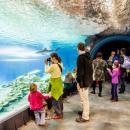 Wrocławskie zoo - rekord w150-letniej historii