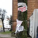 Czy zawsze trzeba kaleczyć drzewa?