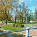 Wyborczy hyde park na Wyspie Słodowej