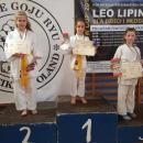 Worek medali karateków wWołowie