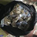 Przechwycili blisko 5 kg narkotyków