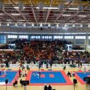 IX Puchar Europy wTaekwon-do Sibiu 2018