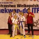 Samuraj na Mistrzostwach Wielkopolski wTaekwondo