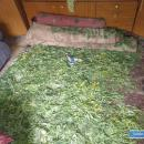 Przechwycili ponad 6 kilogramów narkotyków