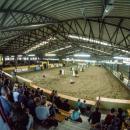 145 jeźdźców i290 koni z9 państw na Partynicach