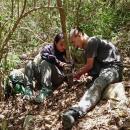 Uznano, że gatunek wymarł - po 30 latach odnaleziono go ponownie – kanczyl srebnogrzbiety