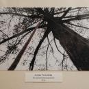 Dolnośląski Konkurs Fotograficzny rozstrzygnięty