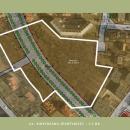 Czy miasto utrzyma zieleń? - zobacz mapy