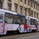 Uniwersytet Wrocławski rozpoczyna współpracę zMPK