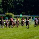 3 maja - start sezonu wyścigów konnych na Partynicach wmiędzynarodowej obsadzie