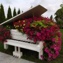 VI edycja Festiwalu Kwiatów wParku Miniatur Minieuroland trwa