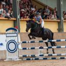 Mistrzostwa wolnych koni na wrocławskich Partynicach